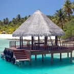 Experience the best of winter sun in the Maldives or Oman