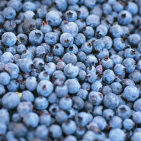 2. Blueberries