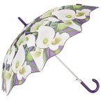 SHOP! Topshop's Lily print umbrella