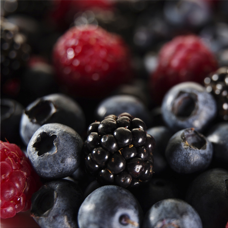 Berries-fruit-blueberry-raspberry- blackberry-handbag.com