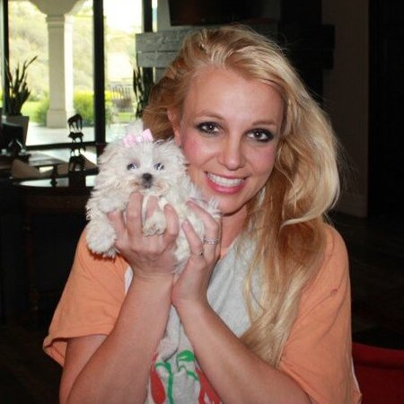 Britney Spears with her puppy, Hannah