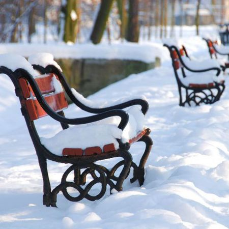 Snow covered benches and park
