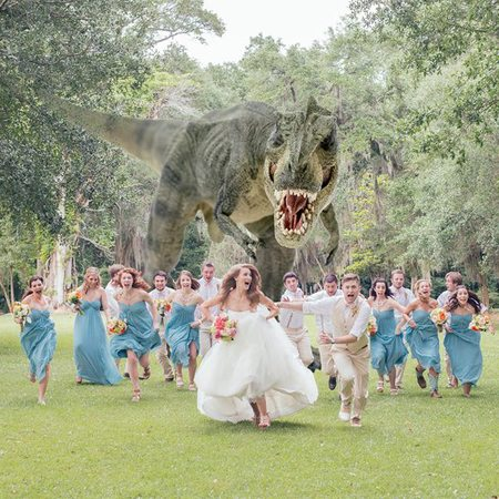 dinosaur gatecrashes wedding