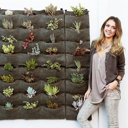 Jessica Alba wall garden
