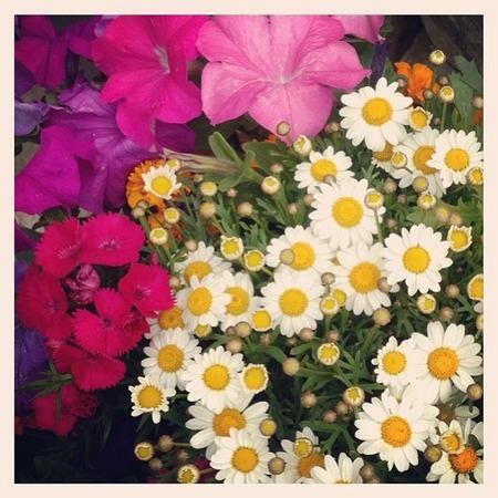 Miranda Kerr flowers