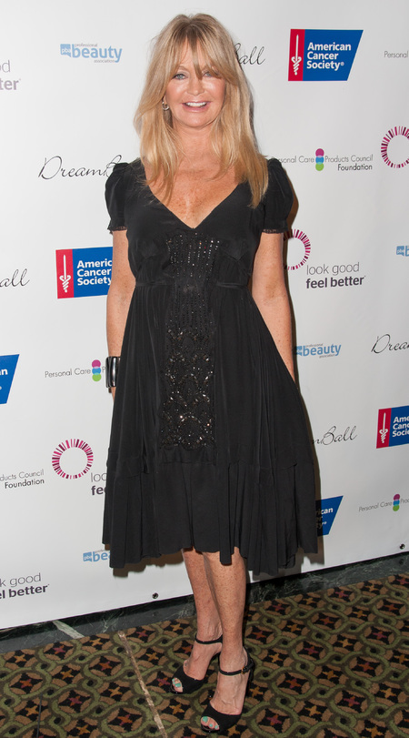 Goldie Hawn in LBD Dream Ball New York