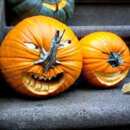 Housekeeping pumpkin carving images - Excellent kid halloween decoration using predator pumpkin carving ideas ...