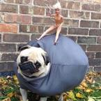 The Top 5 Wrecking Ball parodies
