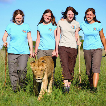 life changing holiday ideas rehabilitate lions