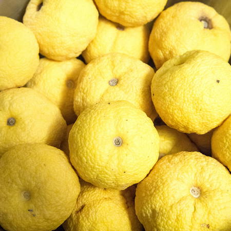 Yuzu the new superfruit - health news - diet and fitness - handbag.com