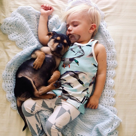 Baby and puppy take naps together - baby sleeping - viral pictures - handbag.com
