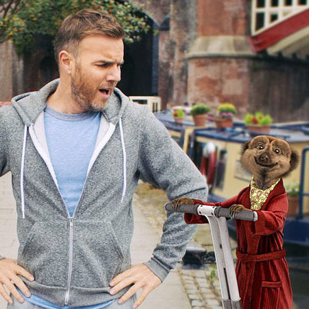 Gary Barlow Compare the Market - Meerkat - celebrity commercials - handbagcom