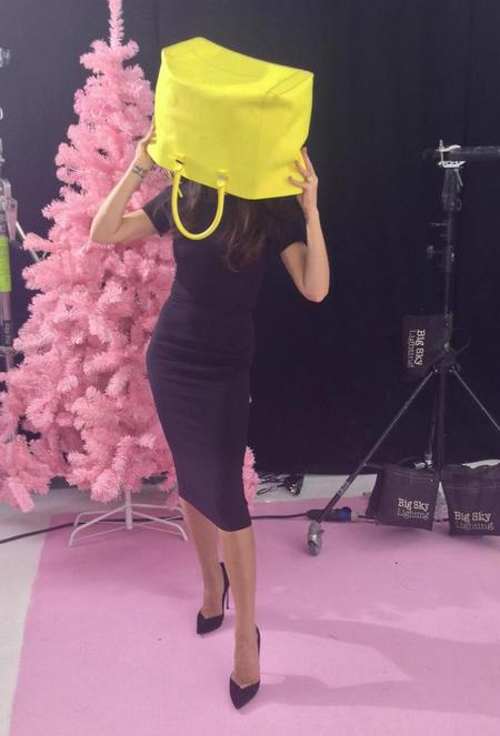 Victoria Beckham - handbag on head - funny twitter picture - celebrity handbag - news - handbag.com