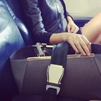 Cheryl Cole buys her Fendi a plane ticket