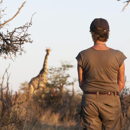 botswana safari - travel animal feature - travel bag - handbag.com
