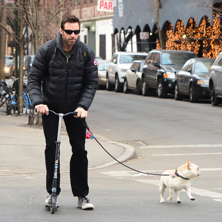 Hugh jackman scooter - walking dog - alternative ways to get to work - handbag.com