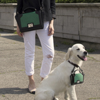 Your dog deserves a tiny designer bag too