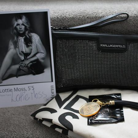 lottie moss - handbags for hospices - used designer bag shop - charity - handbag,com