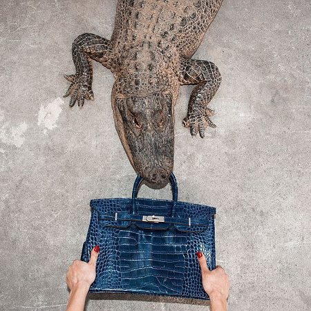 Tyler Shields alligator fights with model for Hermes Birkin Bag - Hermes - designer handbags - leather bags - alligator skin bags - bag controversy - handbag news - handbag.com