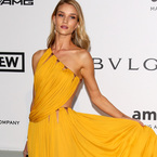 You need to see this Rosie HW dress