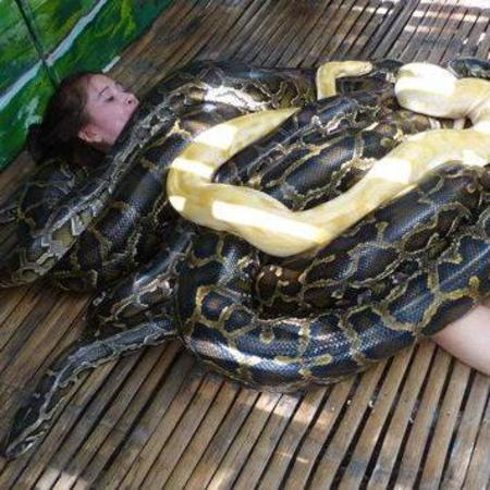 Snake massage beauty treatment - weird beauty treatments - zoo - world news -beauty news - handbag.com