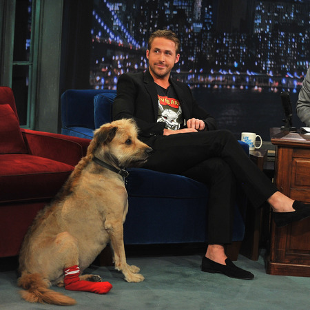 ryan gosling - dog George - reasons why Ryan Gosling is a social media icon - feature - day bag - handbag.com