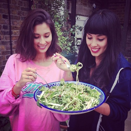 Hemsley and Hemsley book - the art of eating well cover - healthy eating books - health food - diet and fitness advice - handbag.com