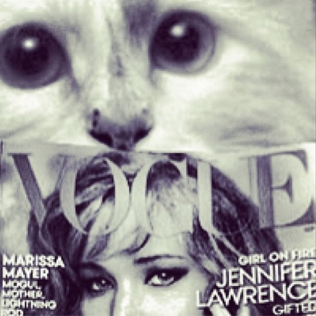 Karl Lagerfeld choupette - with Vogue - instagram - releases new book - day bag - handbag.com